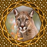 Geometric Cougar