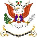 Army - Regimental Colors - 96th Civil Affairs Bn