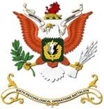 Army - Regimental Colors - 6th PSYOP