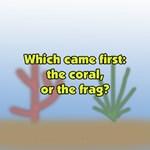 Coral or Frag?