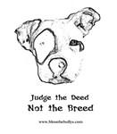 Judge the Deed