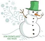 Funny Snowman Snowflakes Illustration