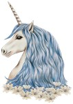 A white unicorn with beautiful long blue hair. With ornamental white flowers. Unicorn hand-drawn with colored pencils.