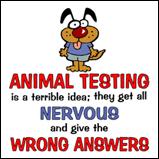 Animal Testing...