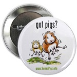 Got Pigs Buttons, Magnets...