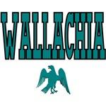 University of Wallachia Ravens Name