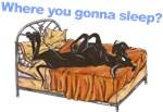 Blk Where you gonna sleep