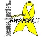 Awareness 1 Endometriosis Shirts & Merchandise