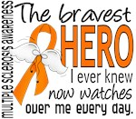 Bravest Hero I Knew Multiple Sclerosis Gifts