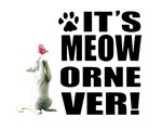 It's Meow or Never Logo