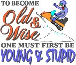 Old & Wise = Young & Stupid