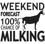 Toggenburg Dairy Goat Weekend Forecast