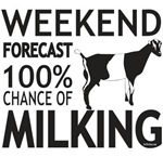 LaMancha Dairy Goat Weekend Forecast