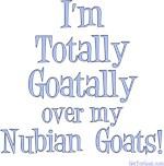 Totally Goatally Nubian Goat