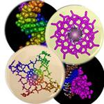 Molecular Magnets and Buttons