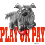 Play or Pay