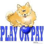 Pay or Play Pup