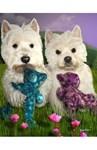 Duffy & Cassie