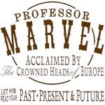 Professor Marvel Shirt