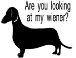 Are you looking at my wiener?
