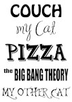 Couch My Cats Pizza Big Bang Theory