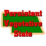 Nebraska - Persistent Vegetative State