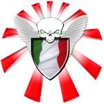Italian Defender Shield