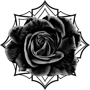Black Rose On Gothic