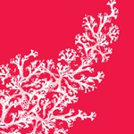 Coral Pattern T-shirts & Gifts