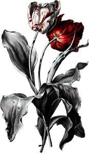 Gothic Dark Tulips