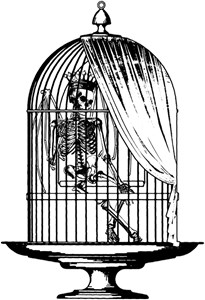 Skeleton In Birdcage
