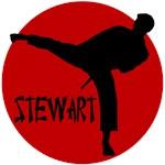 Stewart Martial Arts