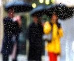 New York Rain Storm