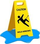 Caution: Arrow to the Knee