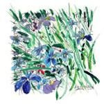 Flowers By Riccoboni
