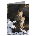 Greeting Cards....Select a Category