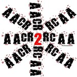 AACR2 for the Cataloger in You