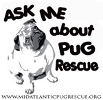 Ask Me About Pug Rescue