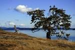 Landscapes and Rural Images