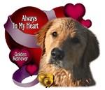 Always In My Heart Golden Retriever