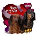 Dachshund_Always In My Heart