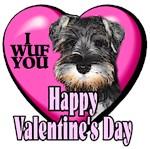 Miniature Schnauzer  Valentines Day