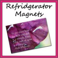 Refriderator Magnets