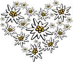 I (Heart) Edelweiss