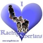 I Love Racing Siberians