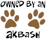 Owned By An Akbash