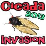 2013 Cicada Invasion