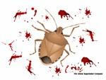 Stink Bug Massacre