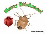 Stinky Christmas Bug
