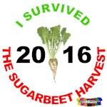 2016 Sugar Beet Harvest